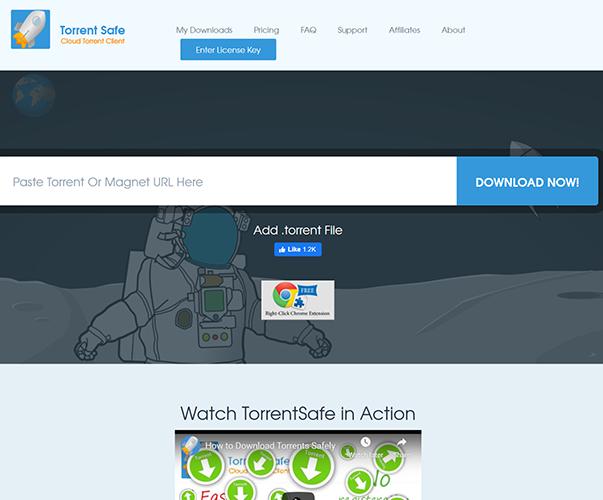 TorrentSafe - https://www.torrentsafe.com
