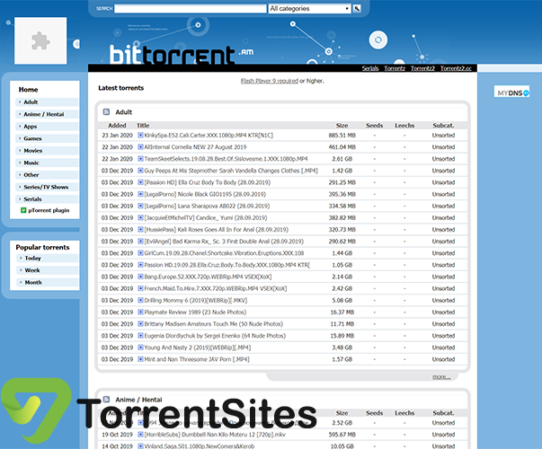 bittorrent.am - bittorrent.am