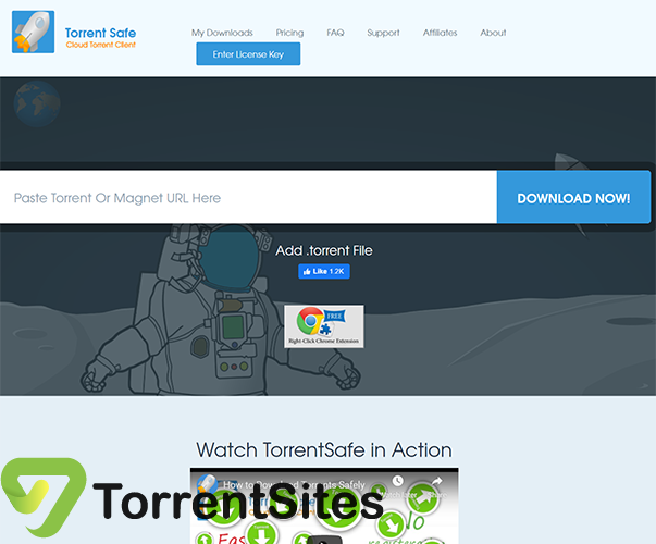 TorrentSafe - https://www.torrentsafe.com